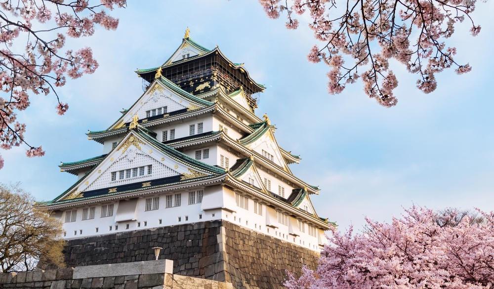 Osaka castle with cherry blossom. Japanese spring beautiful scene.