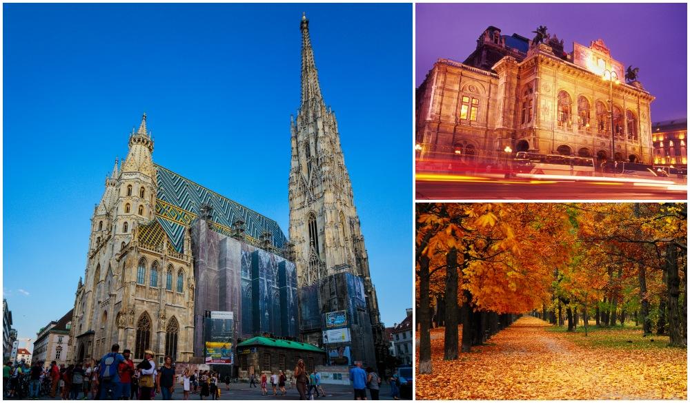 Explore Vienna's Beauty