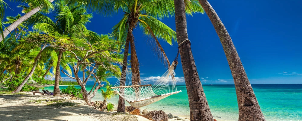 Empty hammock in the shade of palm trees