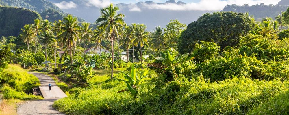 Ovalau island