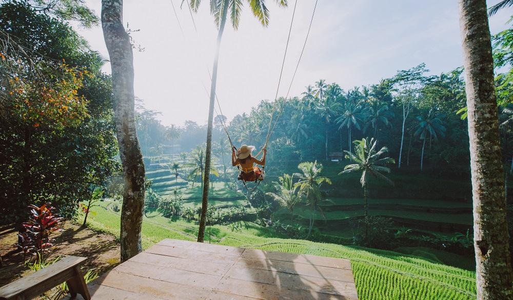 Ubud - Swing over rice fields