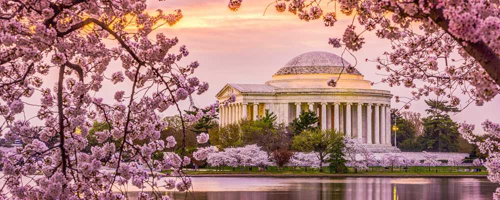 Washington, DC at the Tidal Basin and Jefferson Memorial