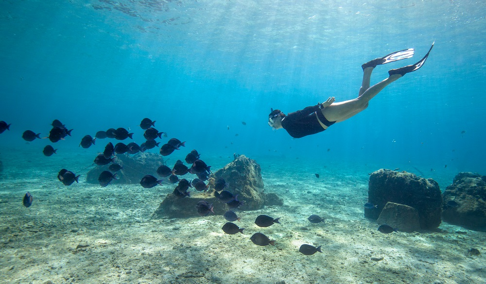 Cozumel-GettyImages-910619154