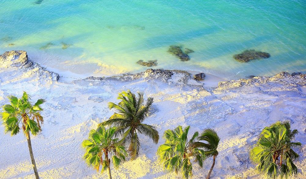 Tropical paradise sunset: Aerial Sunny Sandy caribbean palm trees beach