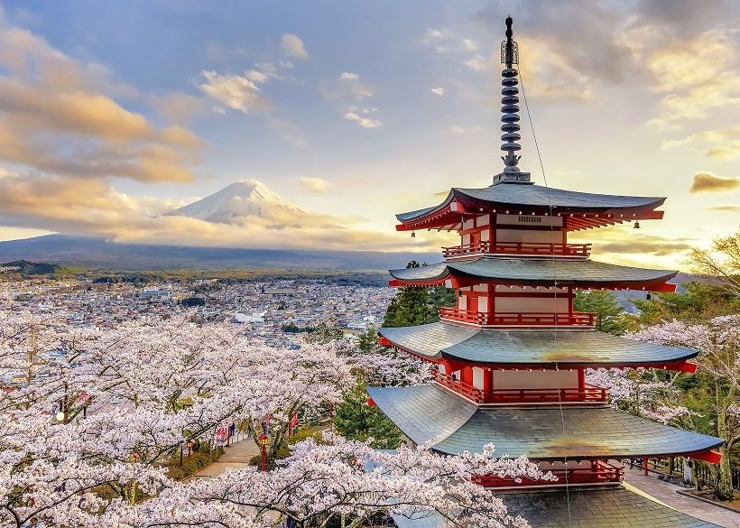 Where To Stay During Cherry Blossom Season In Japan