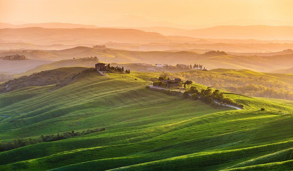 Green countryside in Cinigiano