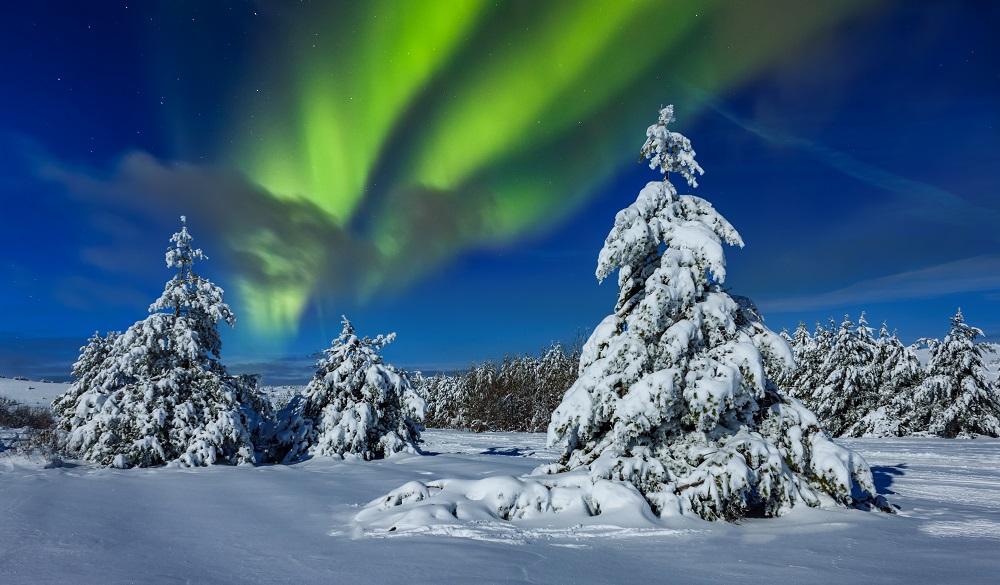 Beautiful winter landscape in Sweden