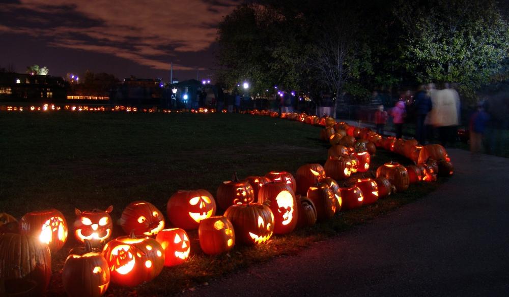 Halloween pumpkins for the Halloween parade