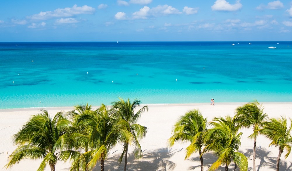 Seven Mile Beach with Palm Tree and Caribbean turquoise water