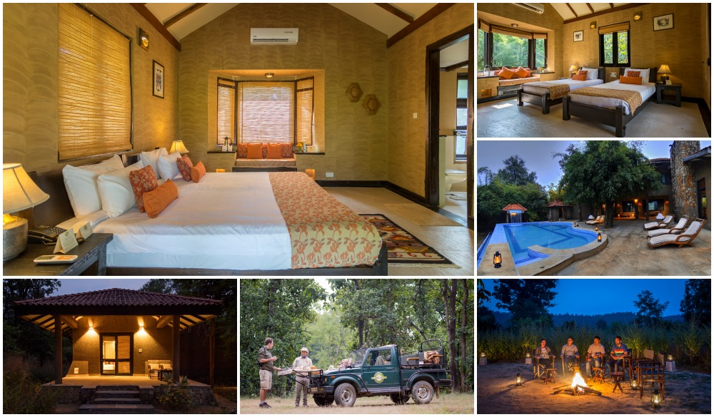 Pugdundee Safaris - Kings Lodge, wildlife encounters