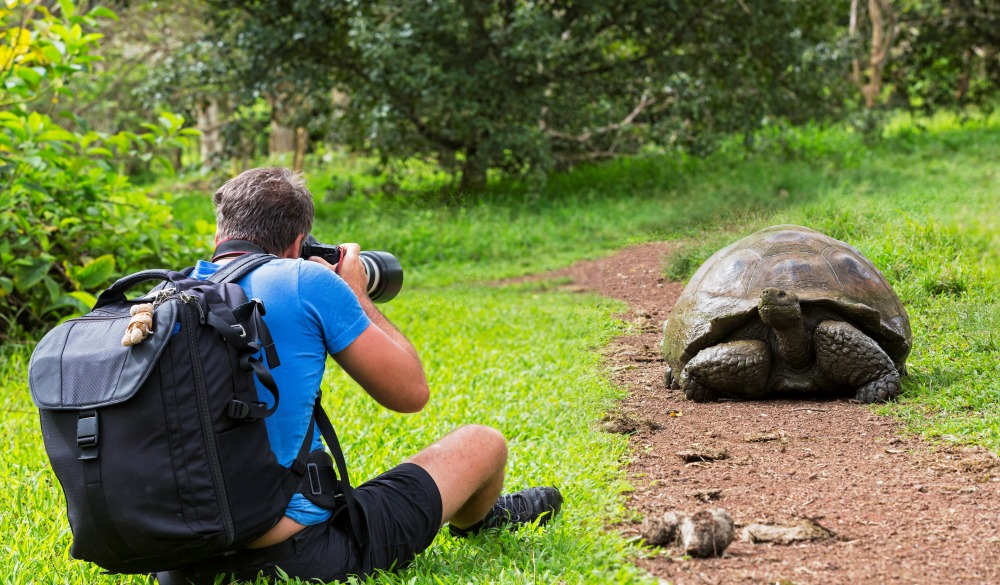 Man photographing Galapagos giant tortoise in Galapagos Islands, best wildlife encounters