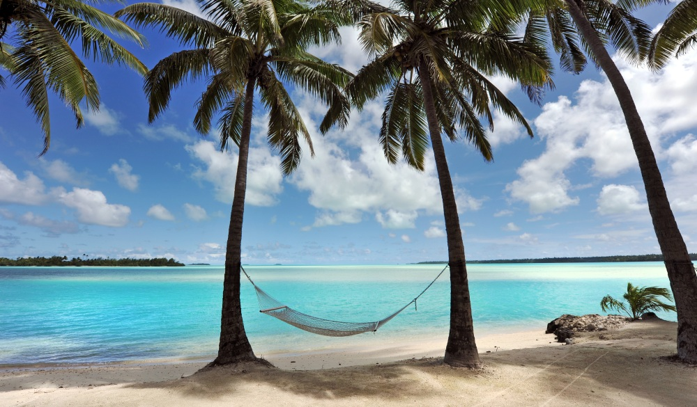 A hammock hangs in the shade of Coconut Palms, tropical island vacations