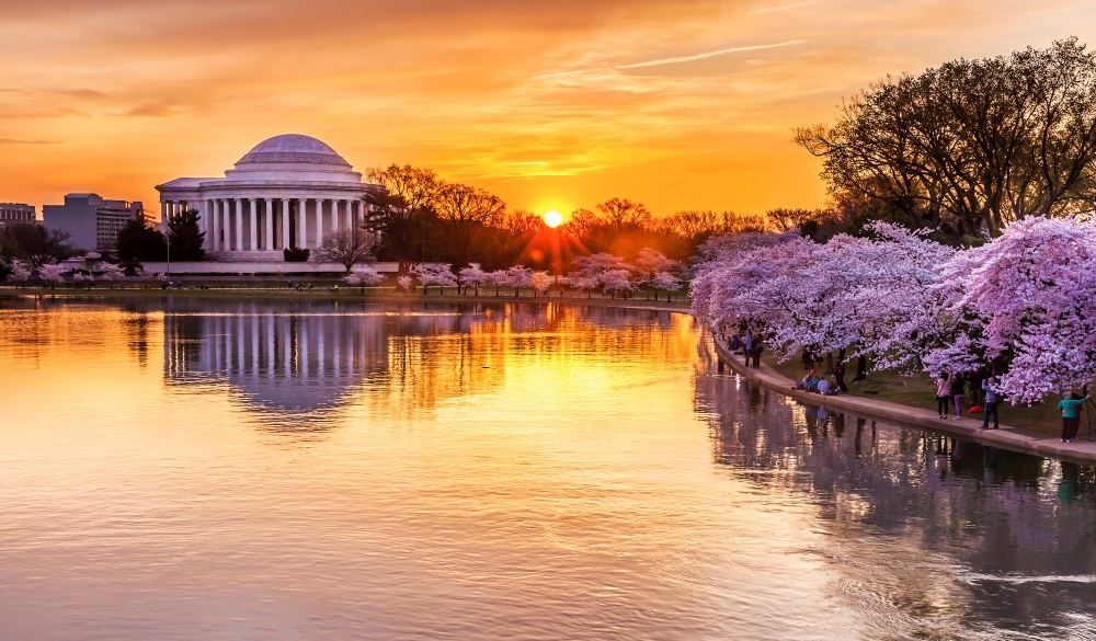 peak bloom at the Tidal Basin, underrated U.S. destinations