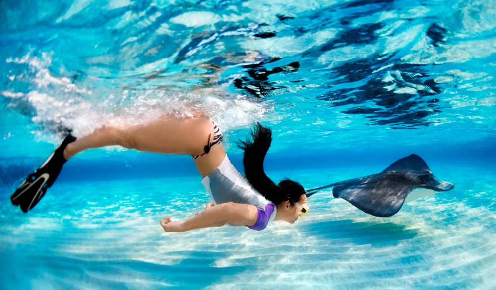 Woman snorkeling with a stingray in the clear waters, tropical island vacations