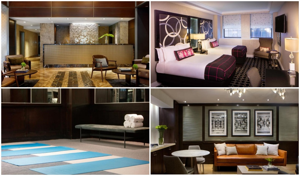 The Kimpton Muse Hotel, hotel in the US with no extra charge for pets