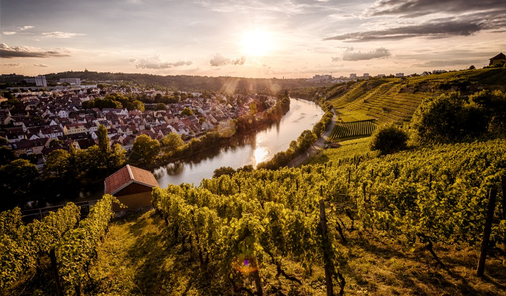 Sunset over the Vineyards at the Neckar