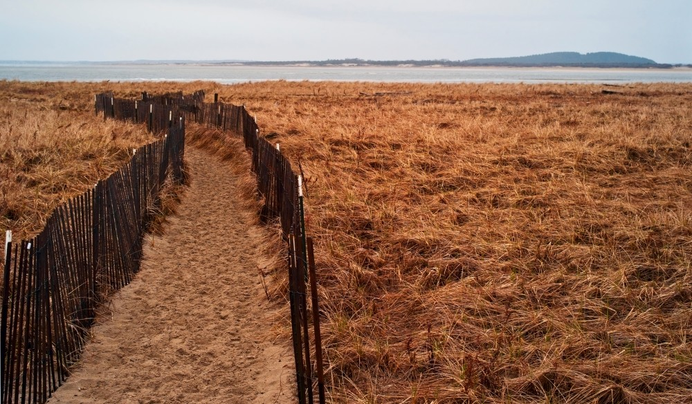 Plum Island, Path toward beach, destination to avoid crowds