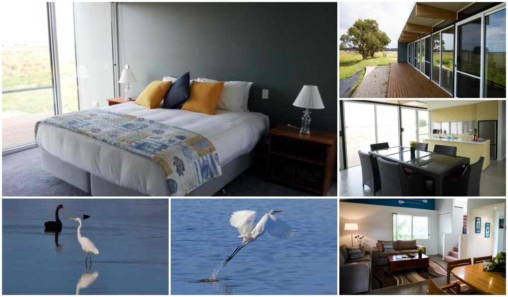 Pelican Point Sanctuary, hotel for your Tasmania road trip