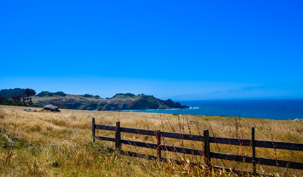 Pacific Coast Highway at Salt Point State Park