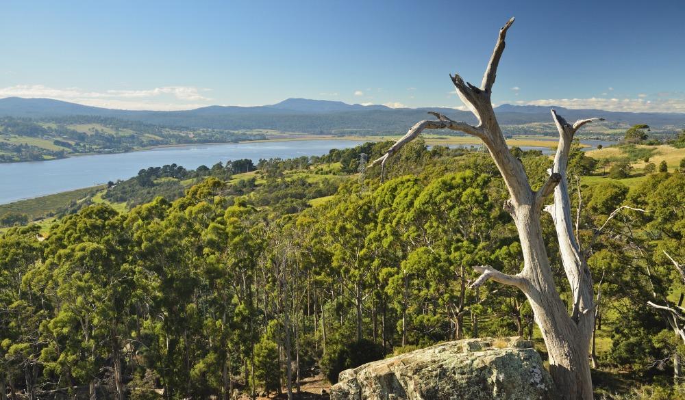 River Tamar, Tamar Valley, Tasmania, Australia, Pacific