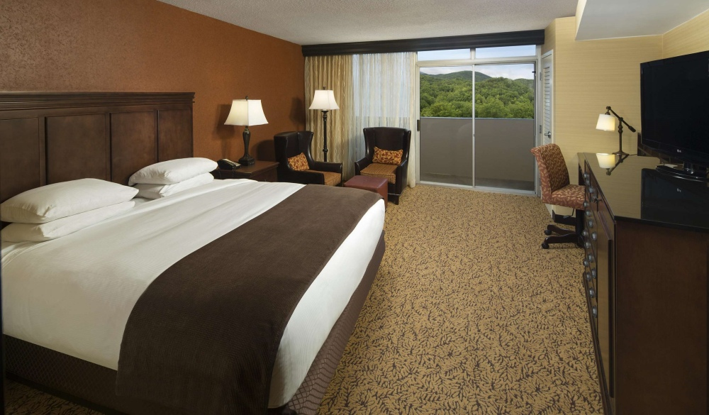 The Park Vista - a DoubleTree by Hilton Hotel - Gatlinburg, hotels near UNESCo sites