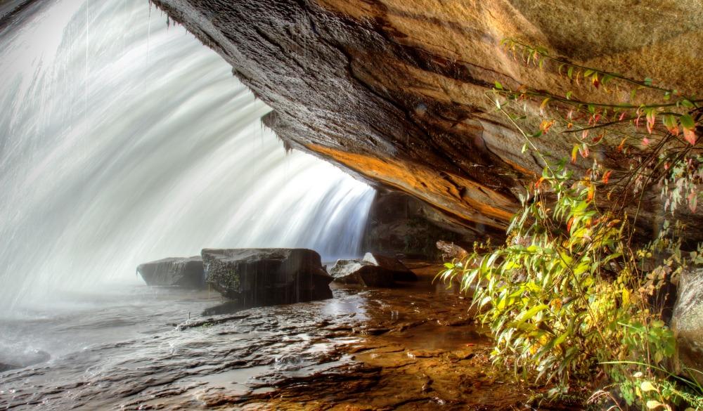 Under Bridal Veil Falls, Dupont State Forest