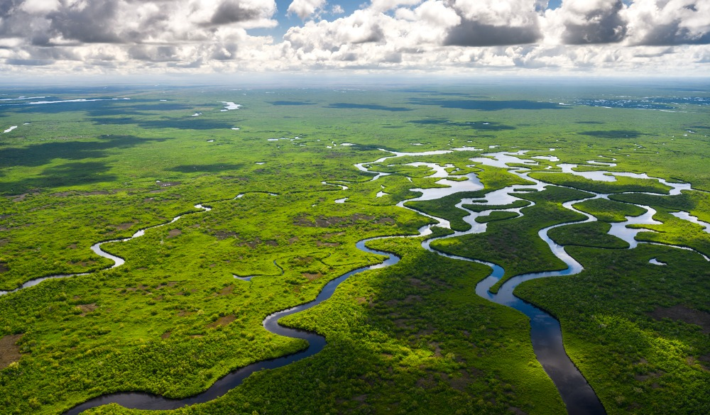Aerial view of Everglades National Park in Florida, USA, UNESCO site in the US