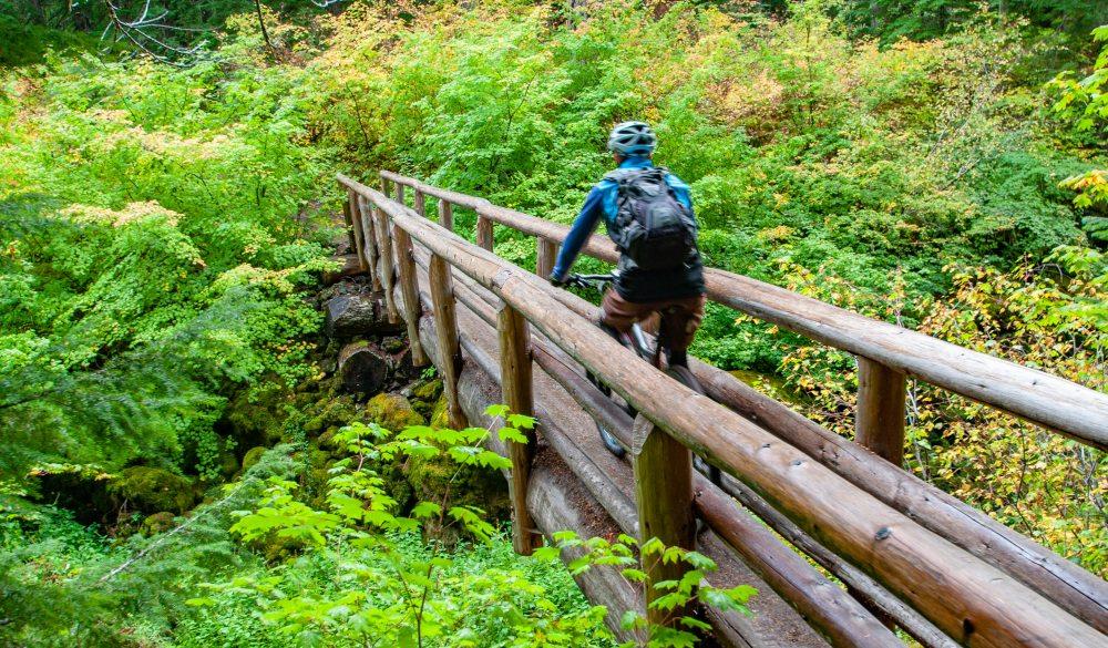 mountain biking on the McKenzie River Trail, best mountain bike trail
