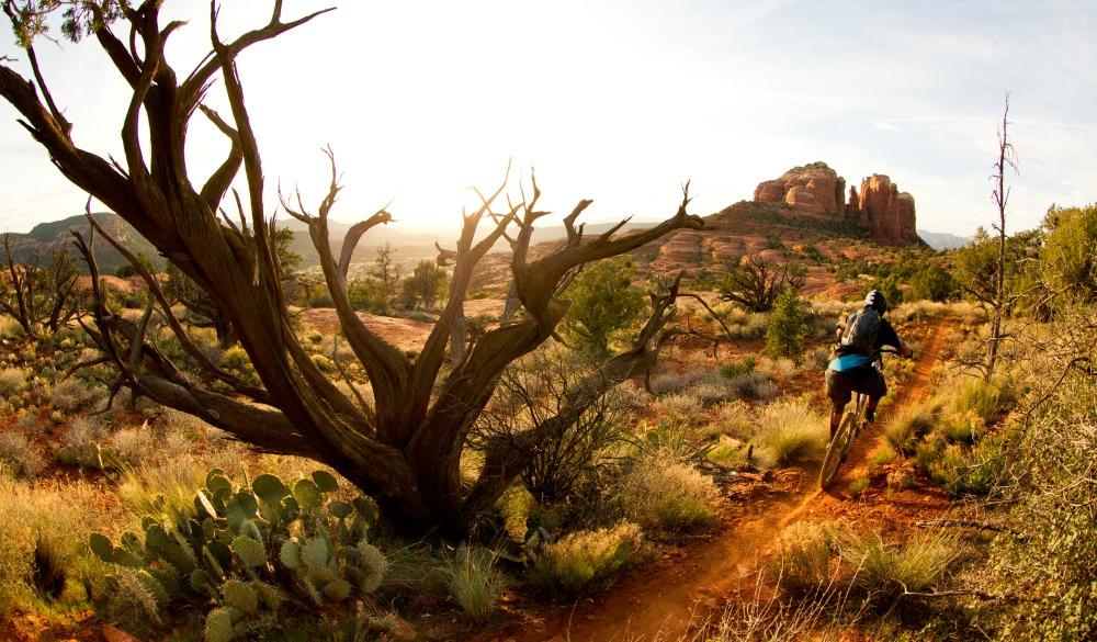 mountain bike rider heads down a singletrack trail at sunset in Sedona, Arizona,