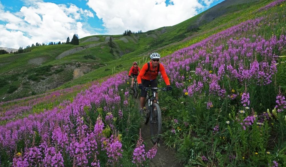 Mountain biking of famous 401 Trail in Crested Butte, bike trail