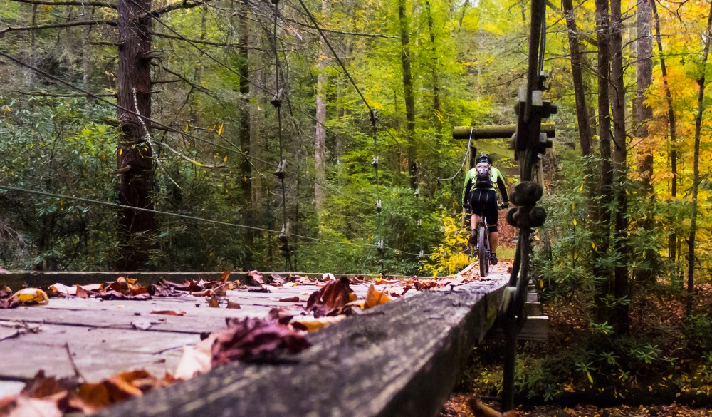 South Mills River Trail in Pisgah National Forest. best mountain bike trails