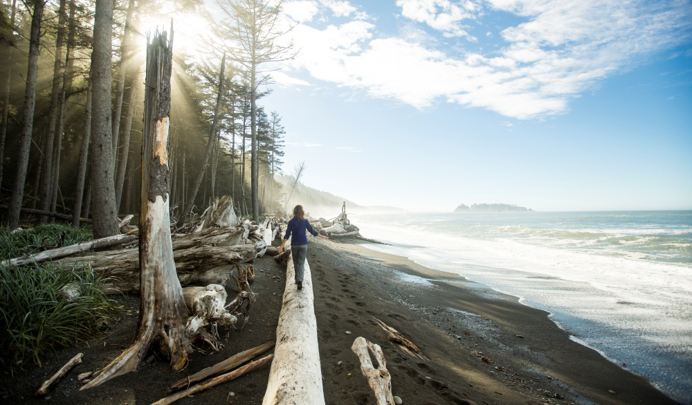 coast in the Olympic National Park