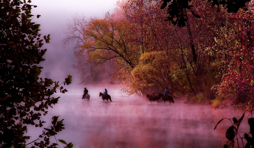 Horses and riders crossing the river on a foggy autumn morning