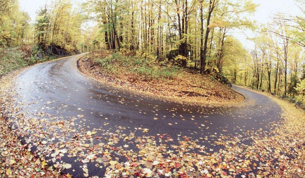 Burke Mountain - Vermont, best mountain bike trails