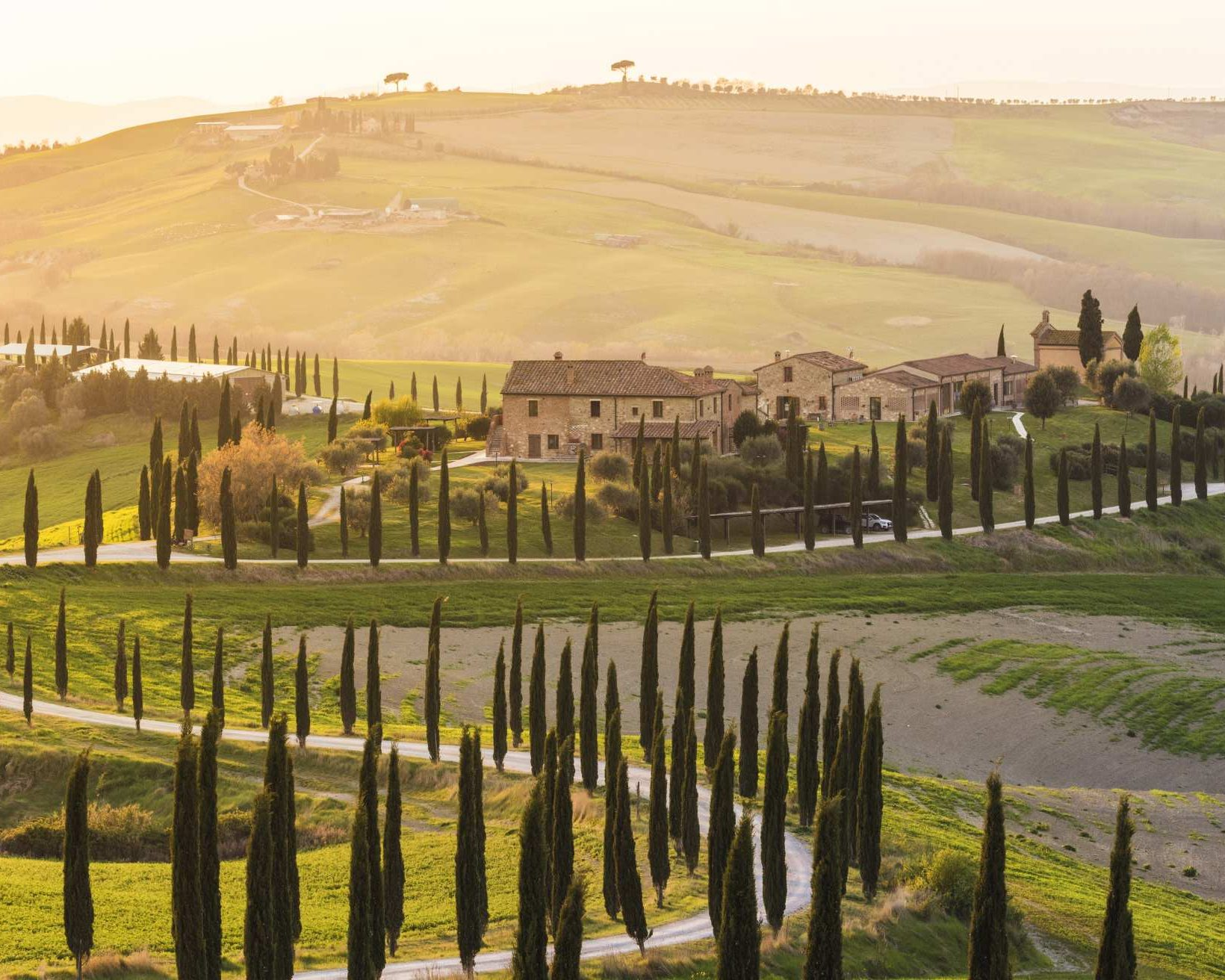 Valdorcia, Siena, Tuscany. Road of cypresses in a farmhouse at sunset