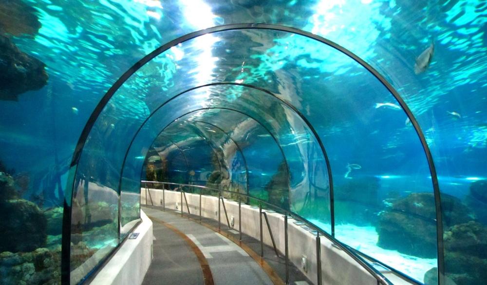 SEA LIFE Bangkok Ocean World shutterstock_72362389