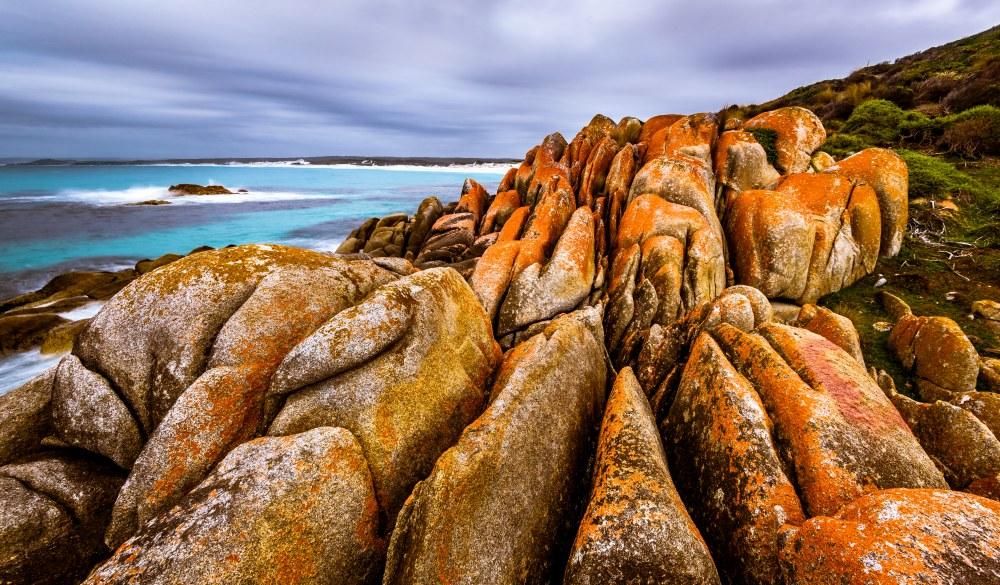 Mount William National Park at Bay of Fires, Tasmania, iconic australian road trip destination
