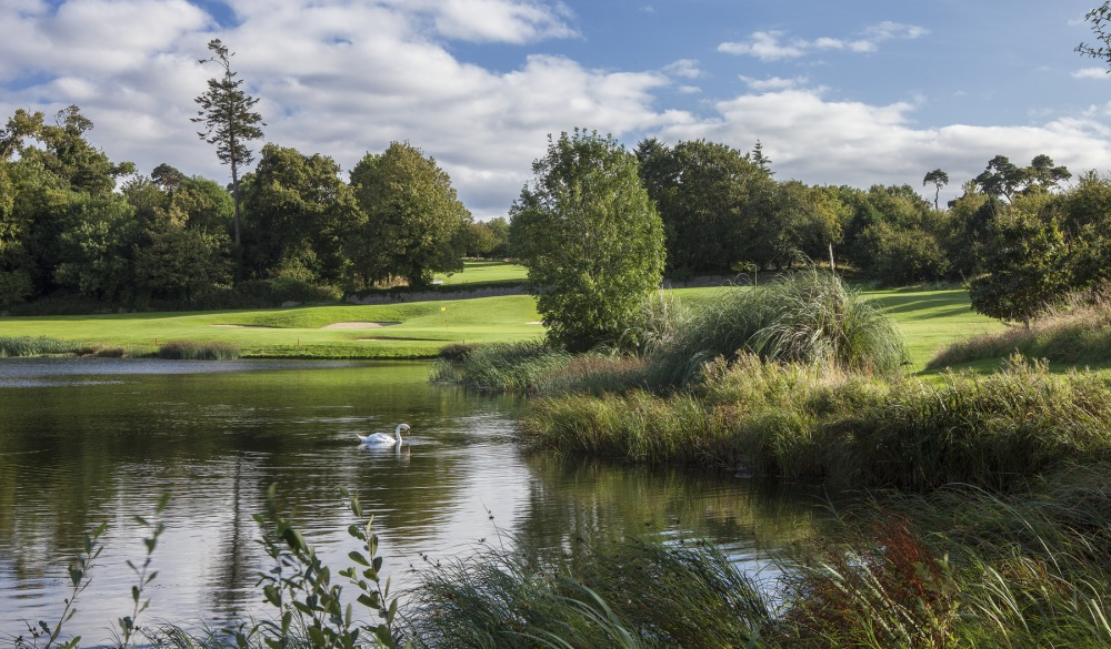Fota Island Hotel and Spa, hotel in a small-town gems in europe