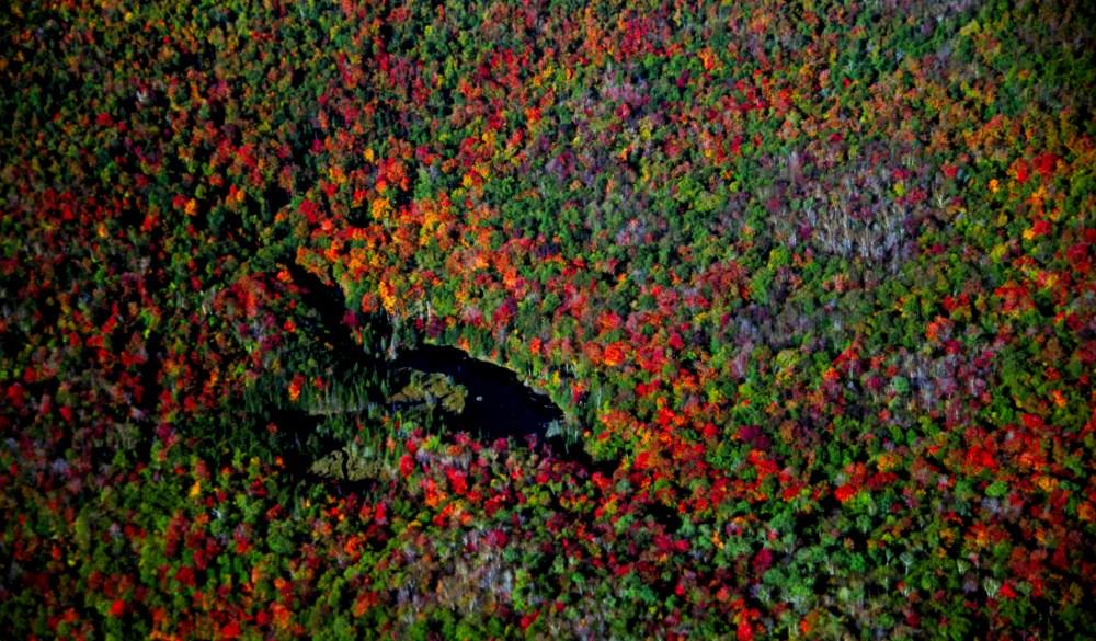 Green Mountain Beaverdam