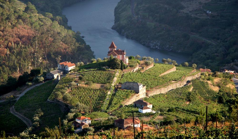 Douro Valley, Portugal, destination for portugal road trip