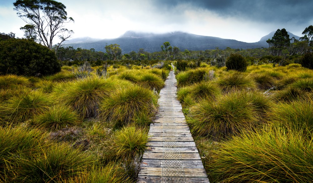 Overland Track, great hikes in Australia destination