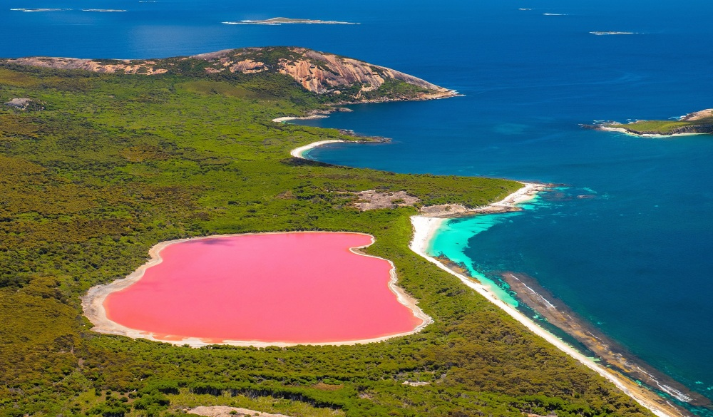 Pink lake, places to visit in western australia