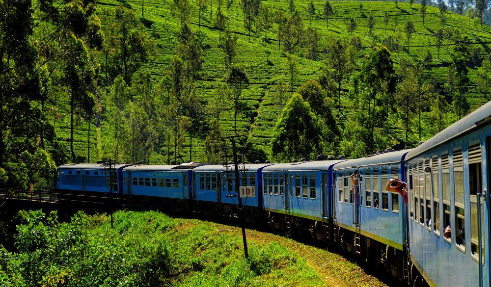 tea plantation train in haputale, scenic train ride