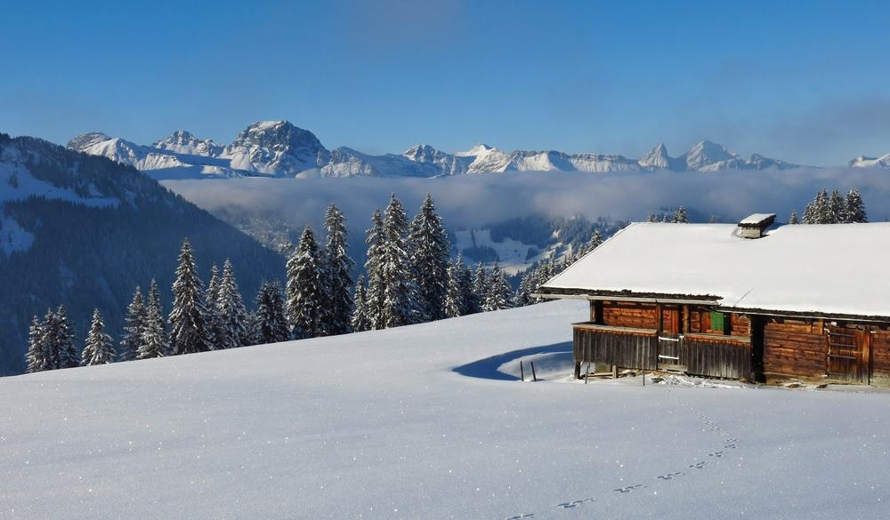 Gstaad (Switzerland), Tropical Paradise VS Winter Wonderland