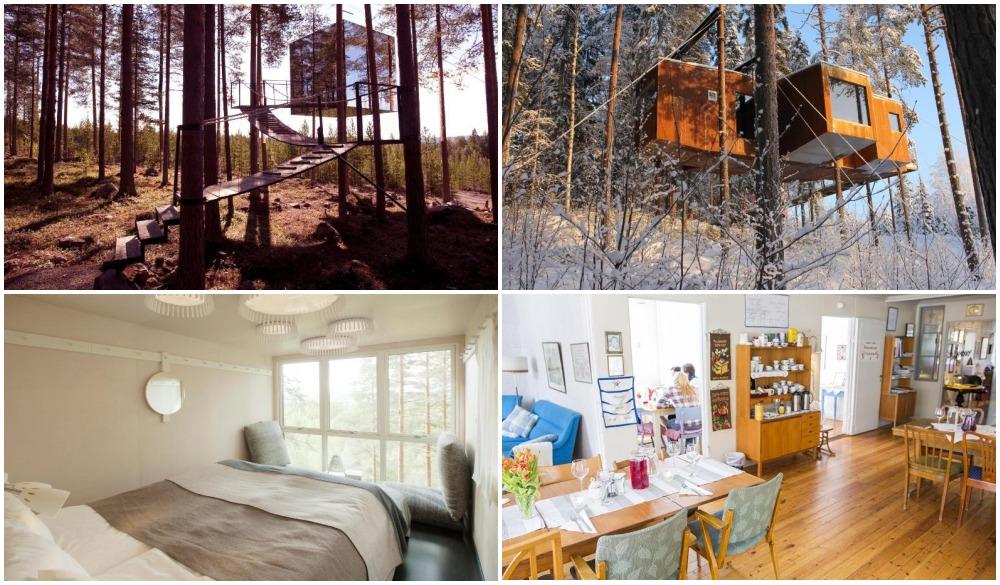 Treehotel – Sweden, treehouse hotel